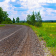 Wet gravel road — Stock Photo