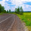 Stock Photo: Wet gravel road