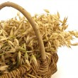 Oats in wicker basket — Stock Photo