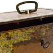 Old chest — Stock Photo #1499345