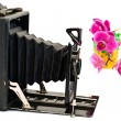 Old camera and flowers — Stock Photo