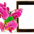 Pink orchid and vooden frame — ストック写真
