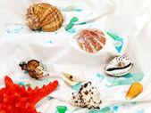 Marine decoration — Stock Photo