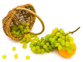 Grape and orange — Stock Photo