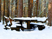 Table in winter forest — Stock Photo