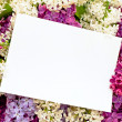 Lilac background with invitation — Stock Photo