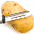 Potato with knife - Stock Photo