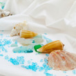 Seashells — Stock Photo