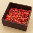 Red pepper seeds - Stock Photo