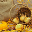 Royalty-Free Stock Photo: Still life with pumpkin