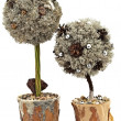 Decorative handmade trees - Stock Photo