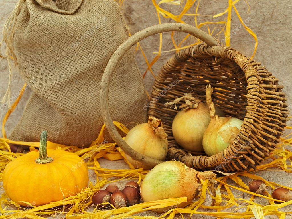  still life with pumpkin, onion in basket and nuts against beige background    Stock Photo #2288679