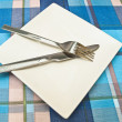 Dish at tablecloth — Stock Photo