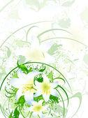 Lilies — Stock Vector