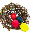 Easter nest — Foto de stock #2675143