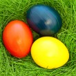 Eastern eggs — Foto de Stock