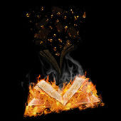 Manuscripts do not burn — Stock Photo