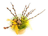 Easter willow — Stock Photo