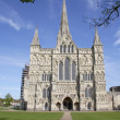 Royalty-Free Stock Photo: Salisbury Cathedral