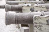 Viejos cañones — Foto de Stock