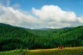 Carpathians landscape — Stock Photo