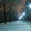 Illuminated snow Notte parco citadella — Stock Photo