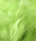 Green feathers — Stock Photo