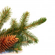 Christmas tree — Stock Photo #1499852