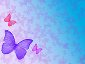 Background with butterfly as frame — Stock Photo