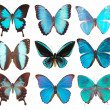 Some various butterflies isolated — Stock Photo #1510469