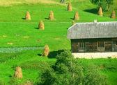 Rural house and haystacks — Stock Photo
