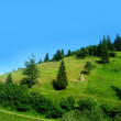 Mountain slope — Stock Photo
