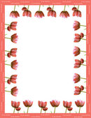 Valentine frame made from red tulips — Stock Photo