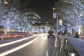 Tokyo dans la nuit — Photo