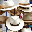 Hats — Stock fotografie #1502784
