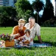 Stock Photo: Family in the park