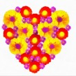Stock Photo: Heart from flowers