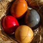 Four easter eggs — Stock Photo
