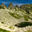 Romanian Carpathians Retezat Mountain — 图库照片
