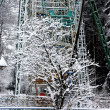 Snow-covered tree and ferris wheel — 图库照片