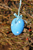 Blue easter egg in spring tree — Stock Photo
