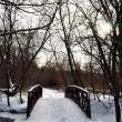Stock Photo: Winter bridge