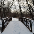 Winter bridge under frost river — Stock Photo