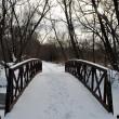 Winter bridge under frost river — Stock Photo