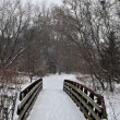 Winter bridge — Stock Photo #1521510