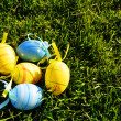 Five small easter colored eggs on grass - Stock Photo