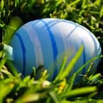 Easter egg in spring grass — Stock Photo