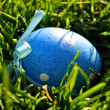 Blue Easter egg in spring grass - Stock Photo