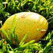 Yellow Easter egg in spring grass - Stock Photo