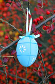 Blue easter egg and red berrys — Stock Photo
